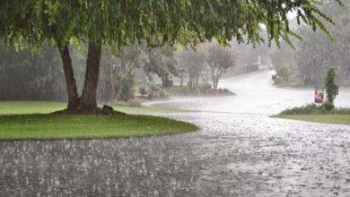 ऑगस्ट, सप्टेंबरमध्ये सरासरीपेक्षा जास्त पाऊस पडण्याचा अंदाज