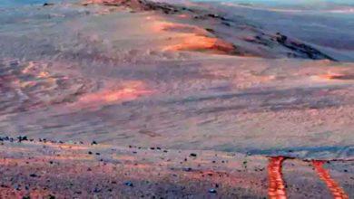 मंगळावर